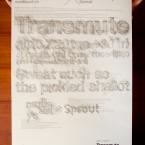 transmute1-01