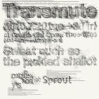 transmute1-02