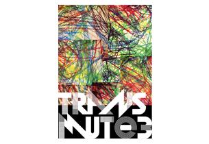 transmute3-icn